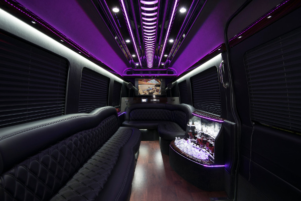 12 Passenger Party Buses Mesa
